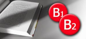 .NIVELLS B1 I B2 ANGLÈS DEL CEFR (MARC COMÚ DE REFERÈNCIA PER A LES LLENGÜES)